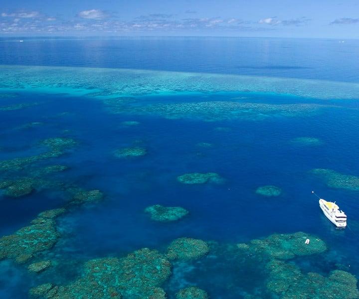 Croisière plongée en Australie
