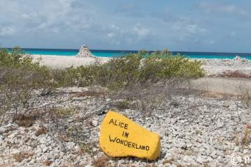 Site indiquée par une pierre peinte en jaune
