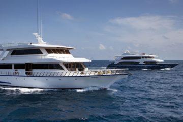 maldives croisiere plongee conte max