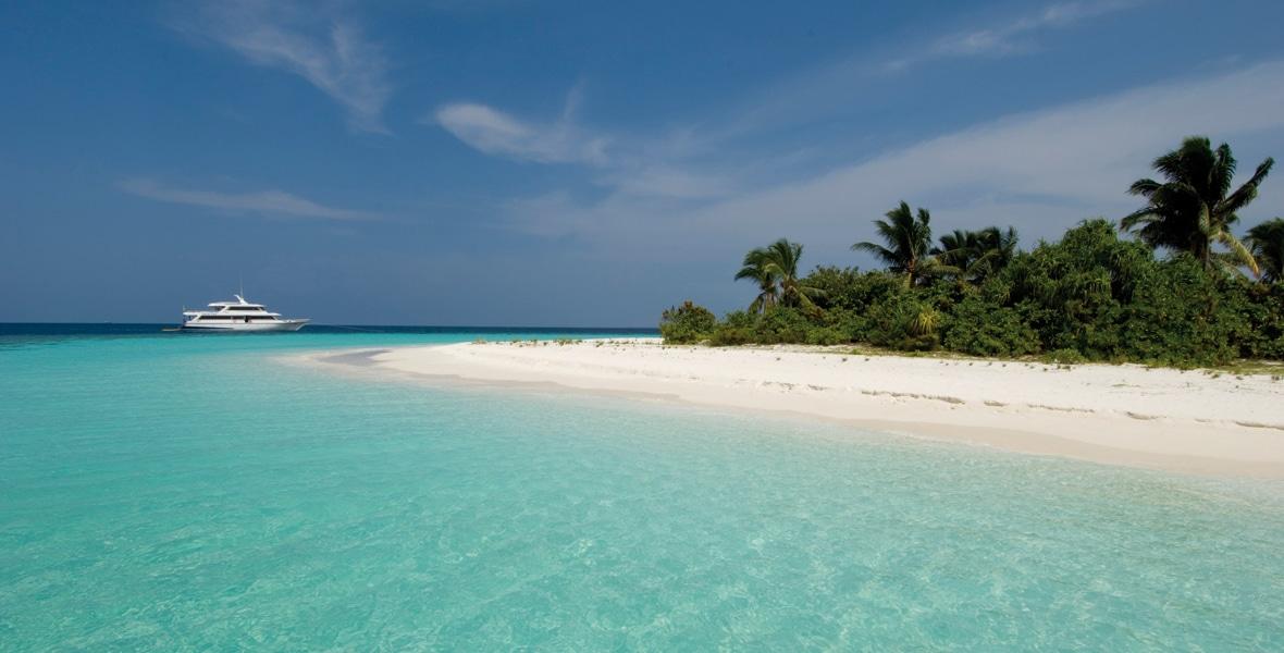 Croisière plongée aux Maldives - Conte Max
