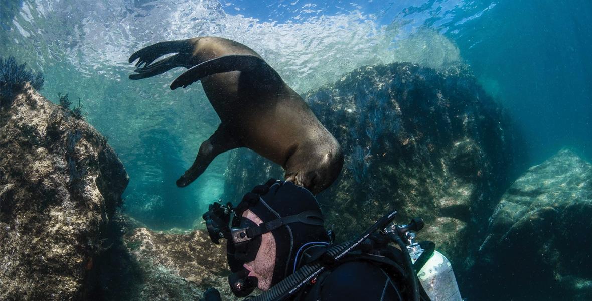 Séjour plongée à La Paz
