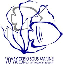 LogoVoyagesBSM MD