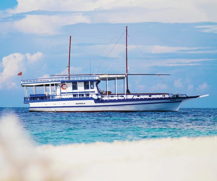 croisiere plongee maldives koimala